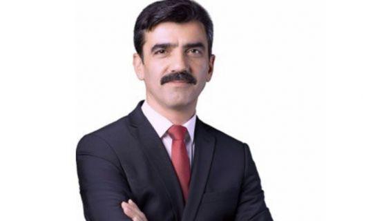 Adnan Pala, Başkan Yardımcısı