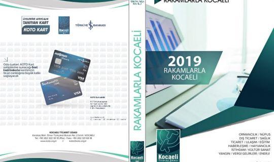 Rakamlarla Kocaeli 2019 yayımlandı
