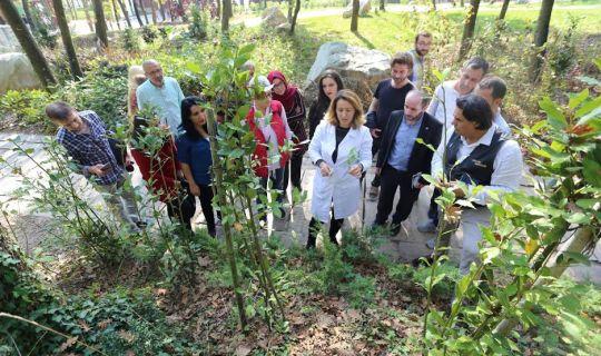 KO-MEK'ten, Tıbbi Aromatik Bitki Yetiştiriciliğine tam destek,