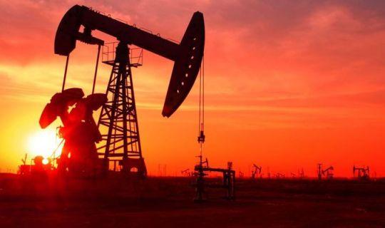 Petrol fiyatları dibe vurdu! Son yılların en düşük seviyesi...