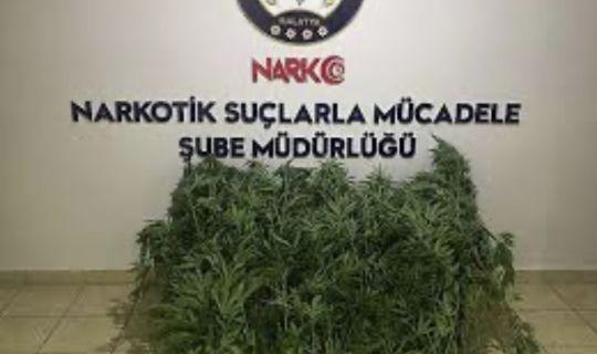 Narkotik Suçlarla Mücadeleye Devam