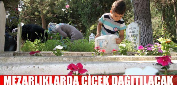 Başiskele'de mezarlıklarda çiçek dağıtılacak