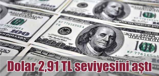 Dolar 2,91 TL seviyesini aştı
