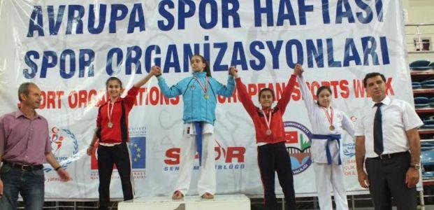 Karateciler Serdivan'da Doruktaydı