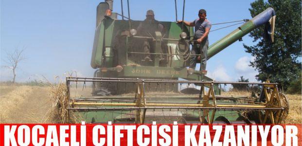 Kocaeli çiftçisi tohum desteğiyle hasatta da kazandı