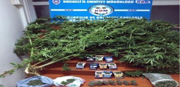 Kocaeli Narkotim'den Uyuşturucu Satıcılarına Darbe