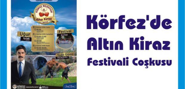 Körfez'de Altın Kiraz Festivali Coşkusu