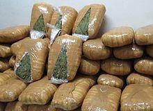 Uyuşturucu madde ve kaçakçılıkla mücadele haftalık rapor