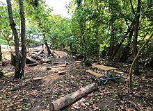 Damlar Vadisi Millet Bahçesi'nde Çalışmalar Hızla Sürüyor