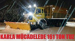 KARLA MÜCADELEDE 161 TON TUZ KULLANILDI