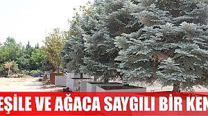 Yeşile ve ağaca saygılı kent Kocaeli