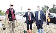 Körfez İlimtepe'ye 750 sedir ağacı