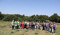 İzmit Belediyesi LavantaBahçesi'nde hasat başladı