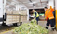 Pazar atıkları organik gübreye dönüşecek