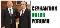 Ceyhan'dan dolar yorumu