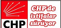 CHP'de istifalar sürüyor