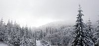 Yılın ilk karını gördük