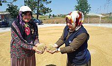 Büyükşehir'den gübre ve tohum desteği